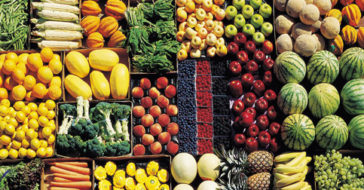 La Dieta Semi Vegetariana