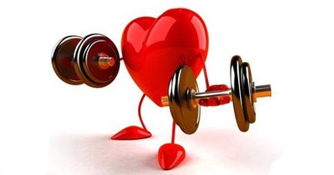 I Fattori del Rischio Cardiovascolare